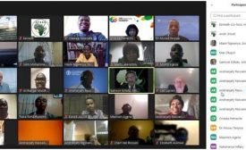 Agricultural Massive Open Online Courses (AgMOOCs) for Extension Workers in Africa